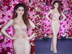 Celebs Wallpapers Of Lux Rose Awards 2017