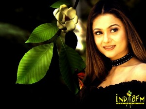 Amrita Arora Photo - 5078
