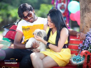 Kannada Movie Dove Wallpapers