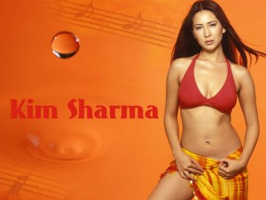 Actress Kim Sharma Wallpaper