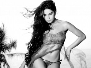 Veena Malik HQ Wallpaper
