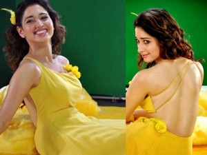 Tamannaah Photo - 43654
