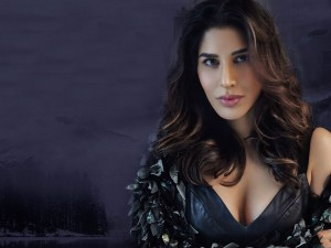 Sophie Choudry Photo - 50440