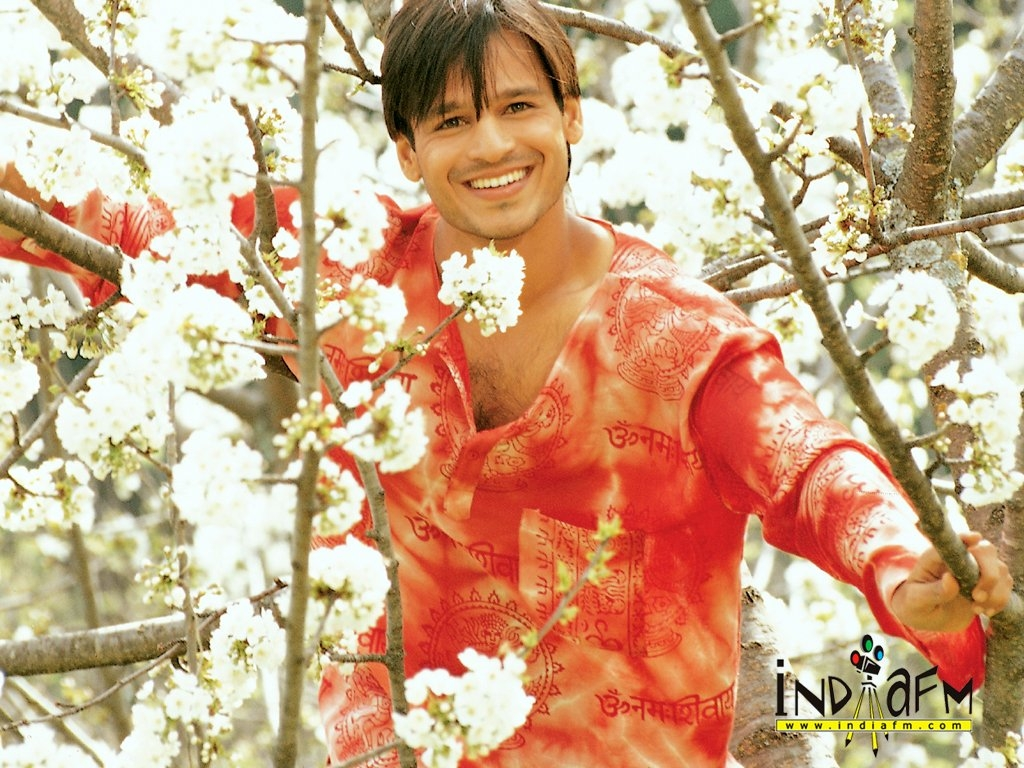 Vivek Oberoi Wallpaper -2572