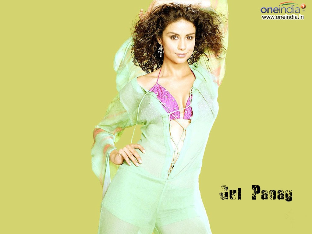 Gul Panag Wallpaper -2829