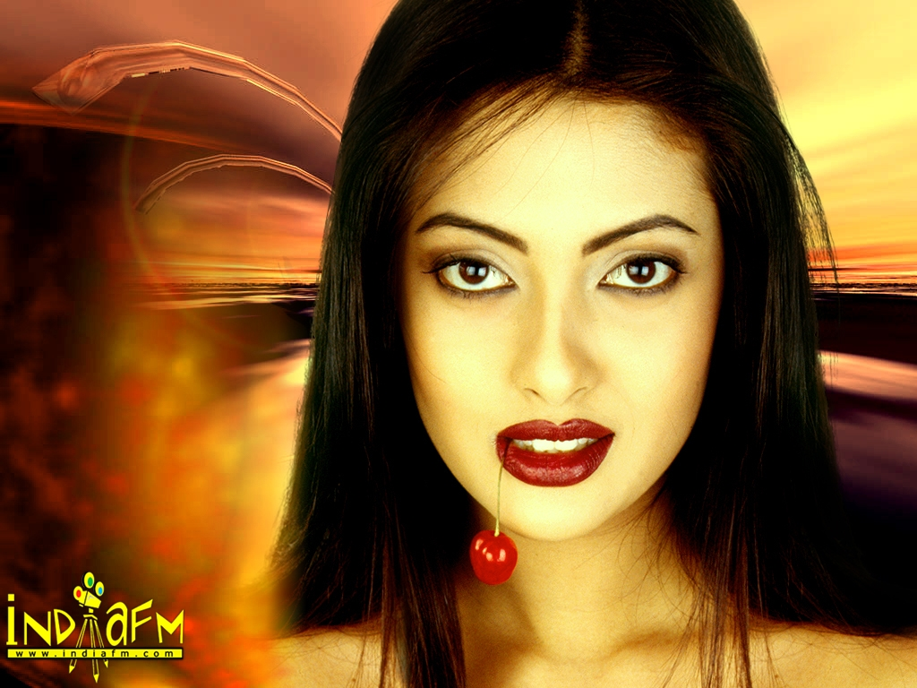 Riya Sen Wallpaper -3864