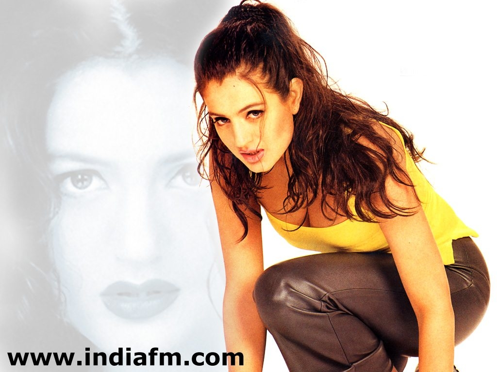 amisha patel hq wallpapers | amisha patel wallpapers - 5614