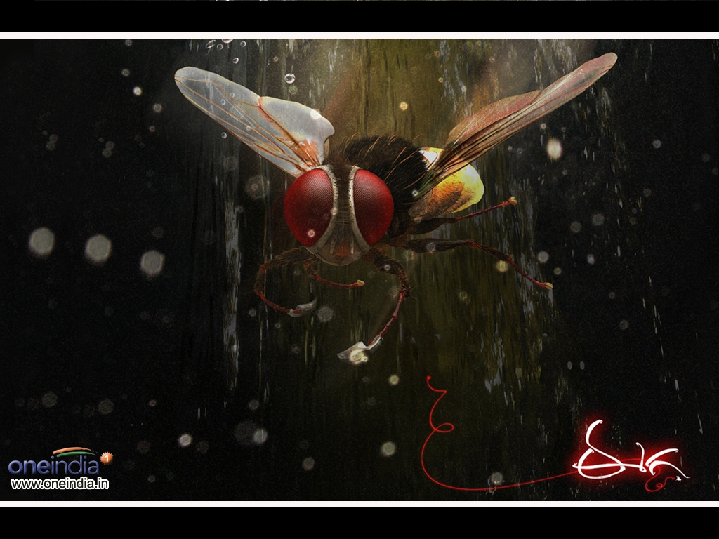 Eega movie Wallpaper -7421