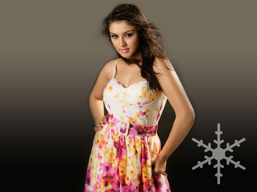 Hansika Motwani Wallpaper -9498