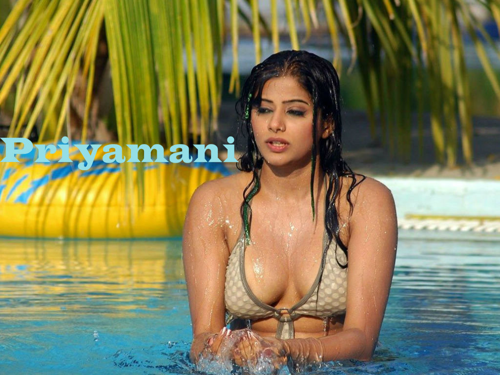 Priyamani Wallpaper -10158