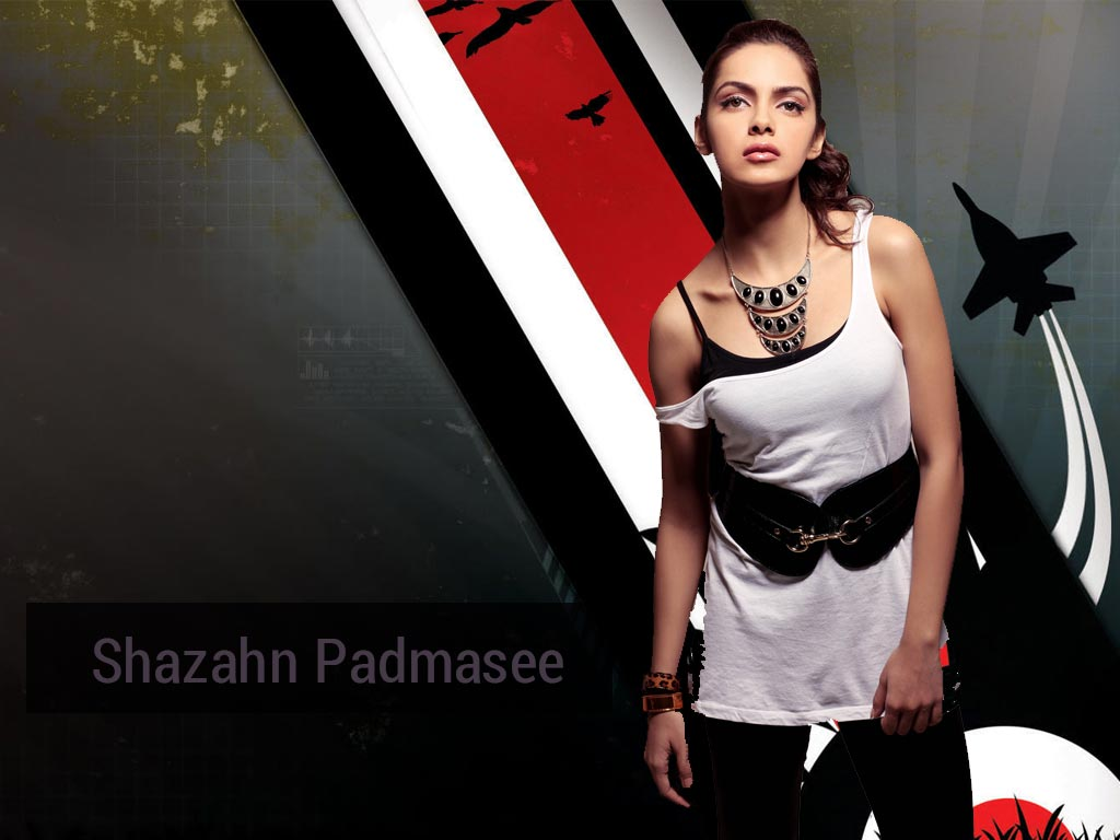 Shazahn Padamsee Wallpaper -11130