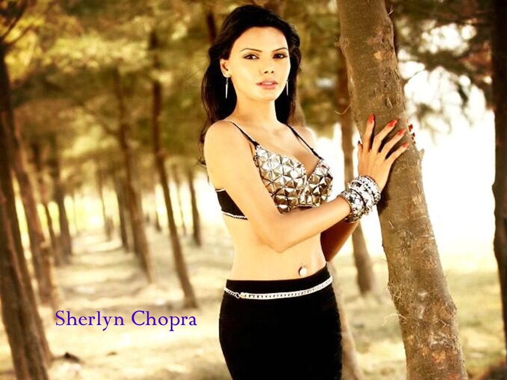 Sherlyn Chopra Wallpaper -12688