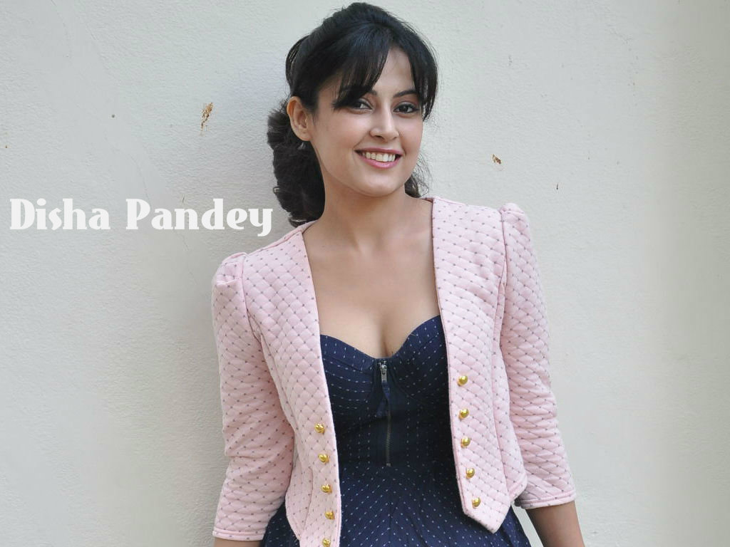 Disha Pandey Wallpaper -13395