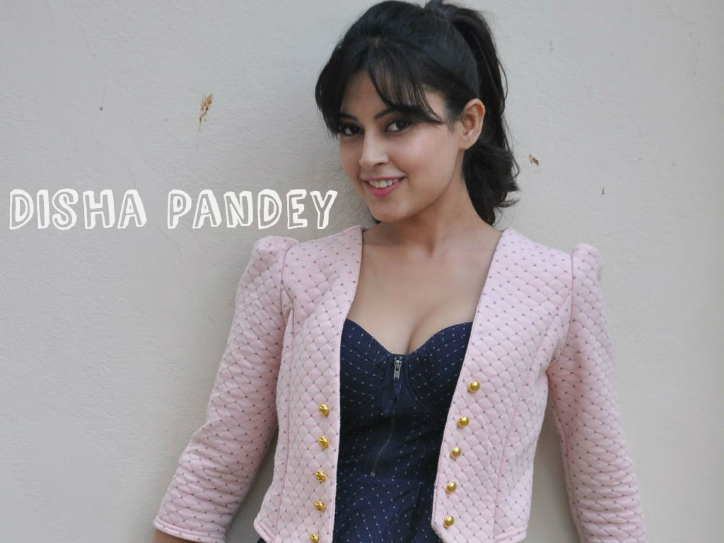 Disha Pandey Wallpaper -13396