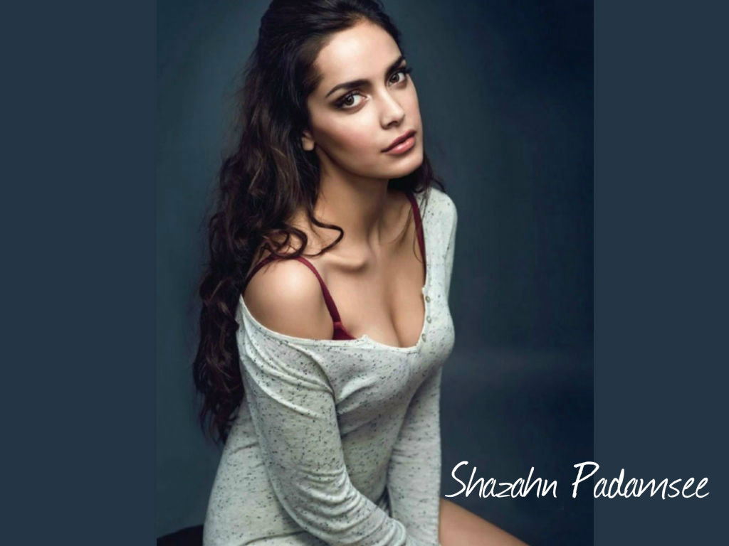 Shazahn Padamsee Wallpaper -13492