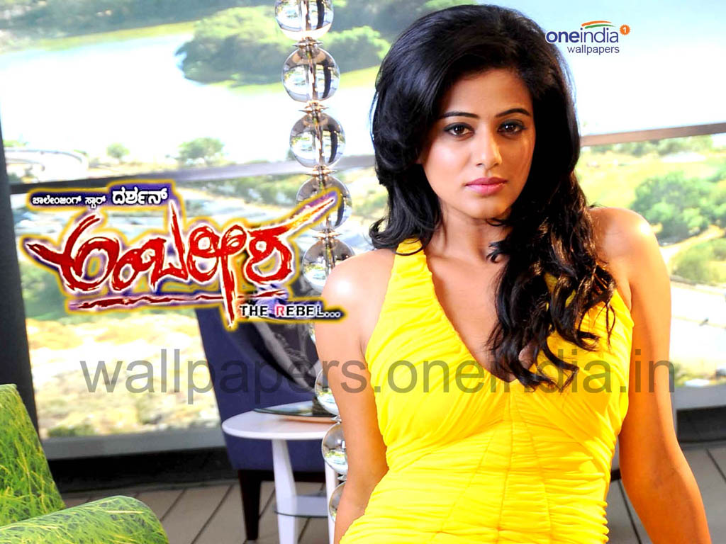 Ambareesha movie Wallpaper -13832