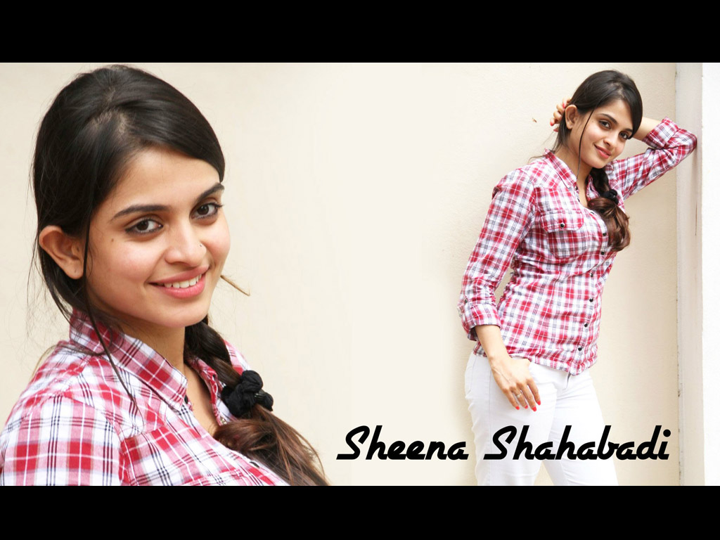 Sheena Shahabadi Wallpaper -14804