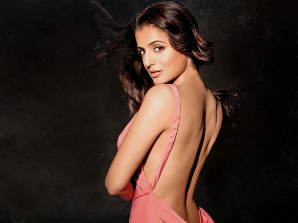 amisha patel hq wallpapers | amisha patel wallpapers - 27898