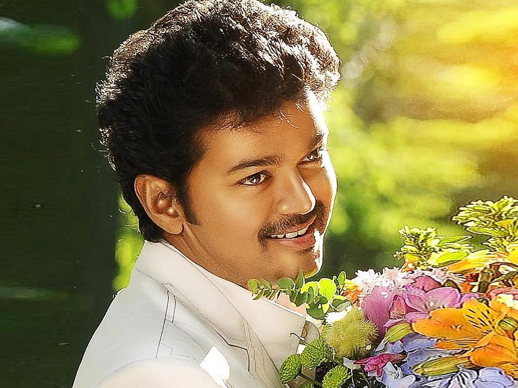 Telugu Actors Hd Wallpapers 53 Wallpapers: Vijay (Tamil Actor) HQ Wallpapers